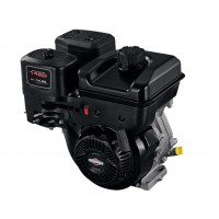 Briggs & Sttraton engine 1450 series, 306 cc